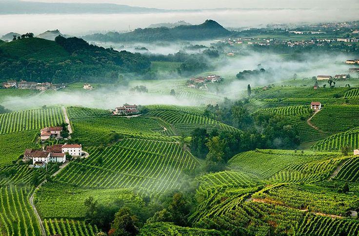 Italia candida Prosecco patrimonio Unesco