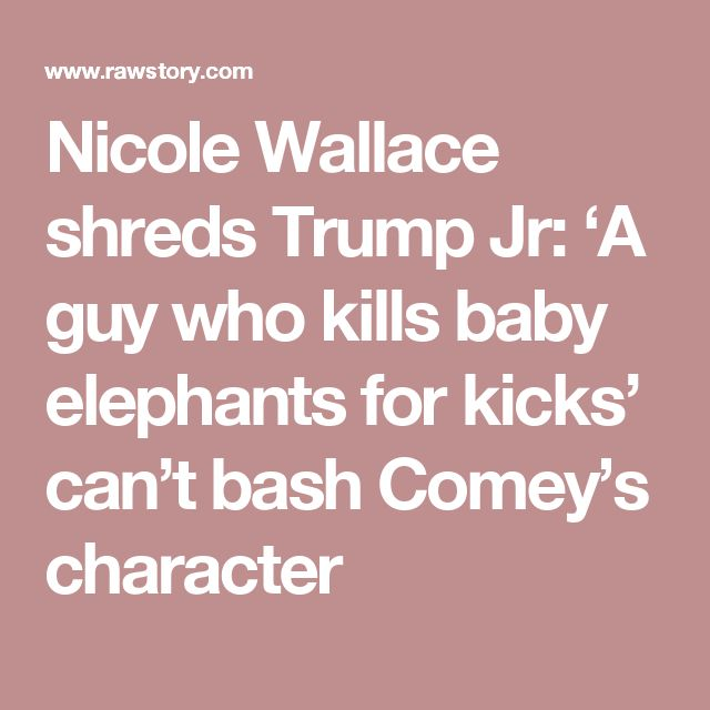 Nicole Wallace shreds Trump Jr: 'A guy who kills baby elephants for kicks' can't bash Comey's character