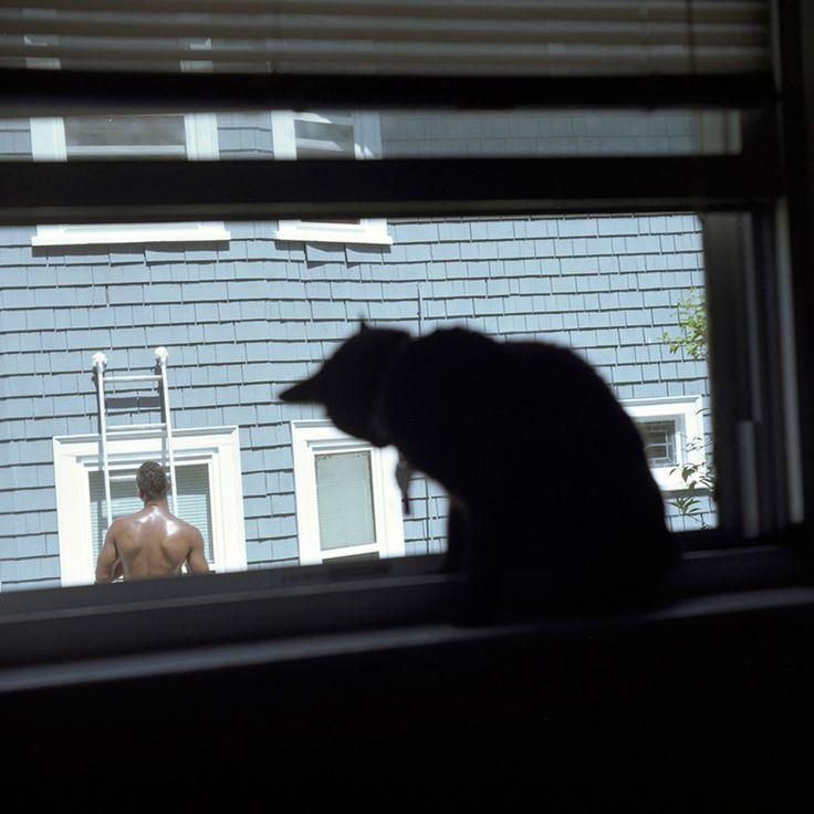 "Ileana Hernandez, ""Window Shopping,"" 2013:"