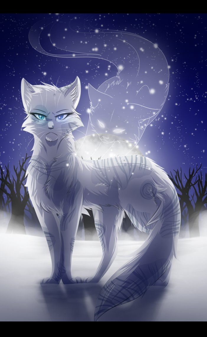 Stormheart Formerly A Rouge Named Hurricane Fireclan Mate