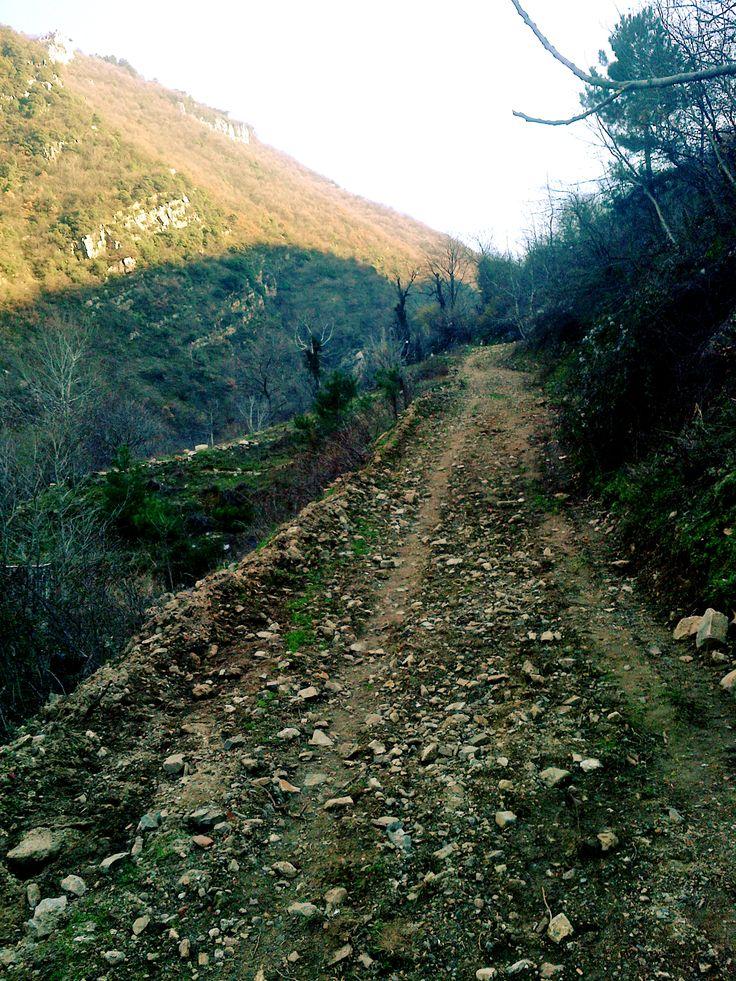 valley, mountain, path
