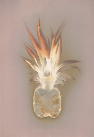 Angela Easterling | Photogram the colours in this photogram remind me of the tropical countries where you would find a pineapple. It also looks like an explosion from a round object.