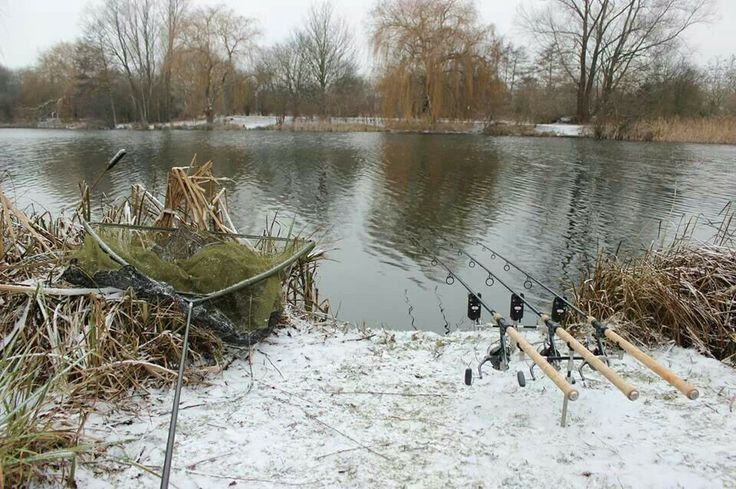 Winter Fishing #carpfishing #richardhandel.com