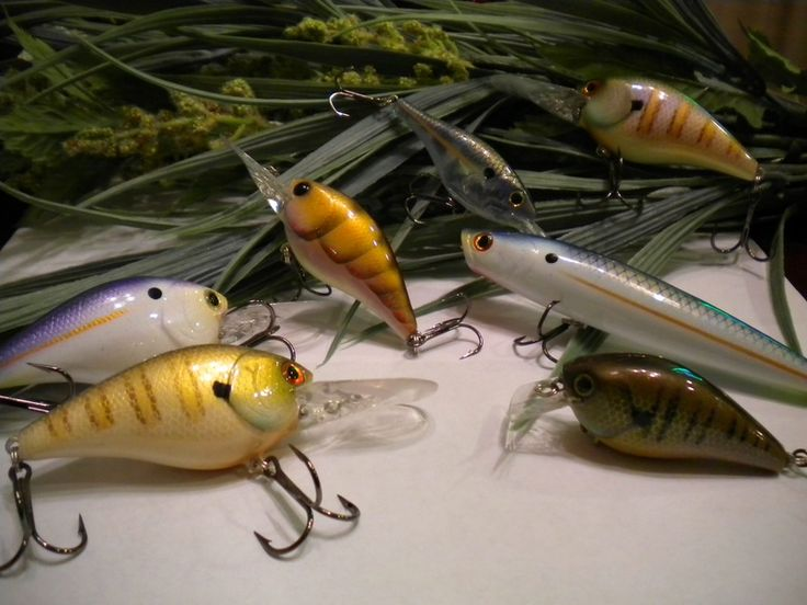 29 best custom bait ideas images on pinterest bait bass for Fishing lure paint