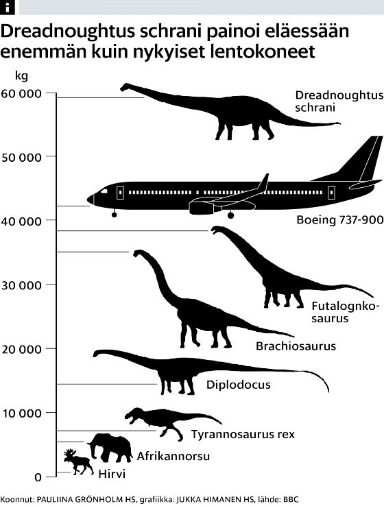 Argentiinassa merkittävä dinosauruslöytö – painoi enemmän kuin Boeing 737 -lentokone - Arkeologia - Tiede - Helsingin Sanomat