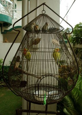 Birdcage on stand in antique gold finish, from the Philippines. Lovely shape.