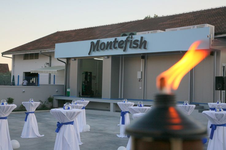 Opening fantastic hall for processing and packaging of fish- Montefish, Tivat- Montenegro