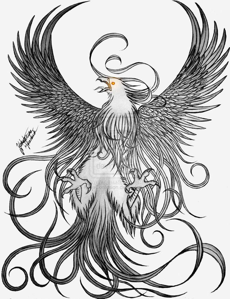 Phoenix Bird Drawings | phoenix by KatieConfusion ...