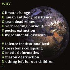 Why choose vegan?