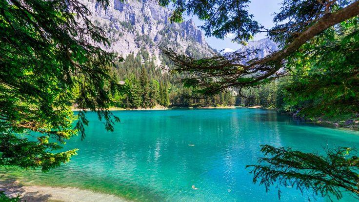 Grüner See, Tragöss | © Steiermark Tourismus | Michael Weberberger