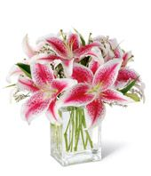 Dream Wedding Bouquet #3 (The Shining Stargazer Bouquet)
