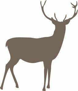 Silhouette Design Store - View Design #72103: reindeer