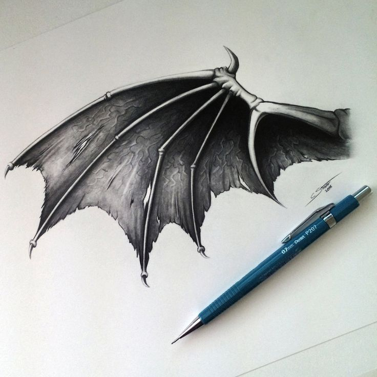 Demon/Dragon Wing Drawing