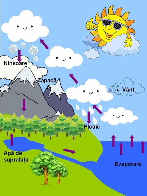 Circuitul apei în natură