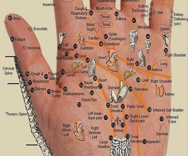 #3 Palm Cure
