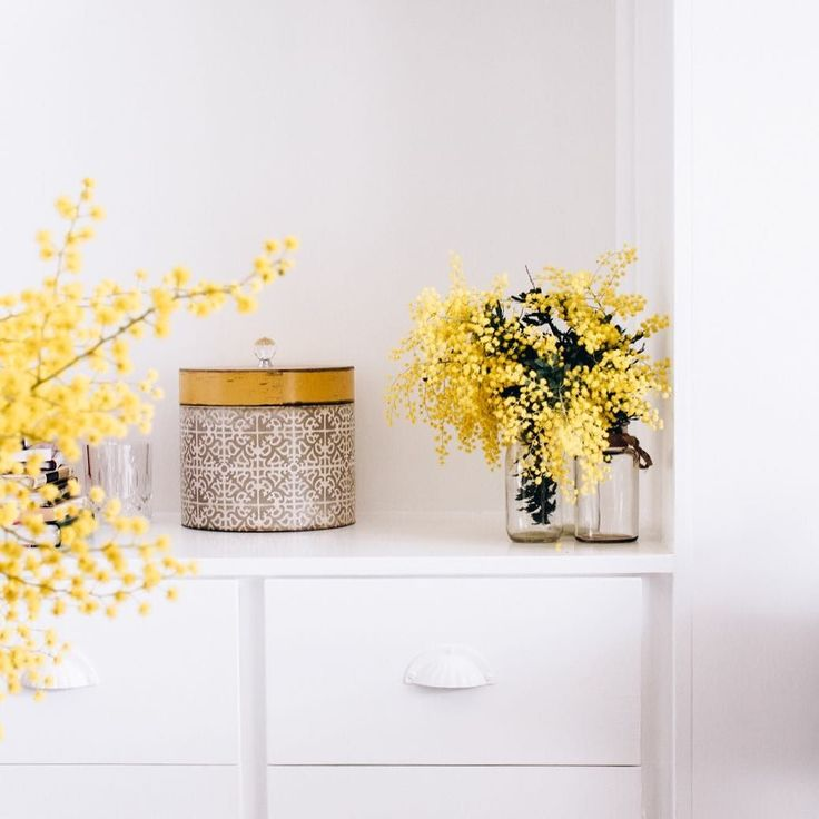 What's your favourite pop of #colour in winter?  Loving the #yellow of Wattle trees at the moment...had to snip a few pieces from the side of the road . . #flowerlove #alltheprettyflorals #quietmoments