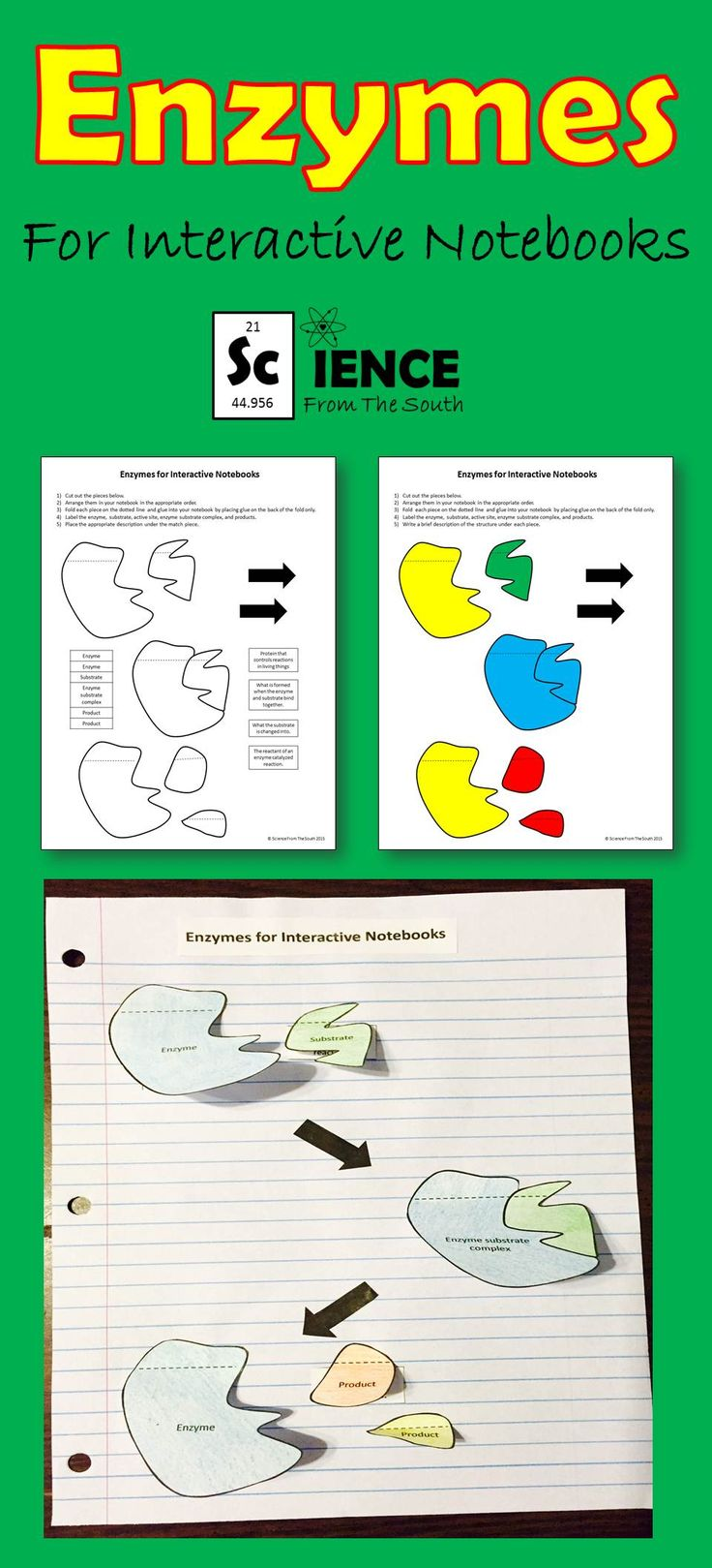 51 best Science From The South images on Pinterest | Worksheets ...