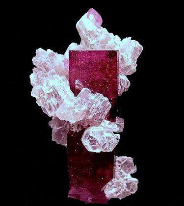 Rubellite (Red Tourmaline) with Lepidolite. From Jonas Mine, Itatia, Minas Gerais, Brazil / Mineral Friends <3