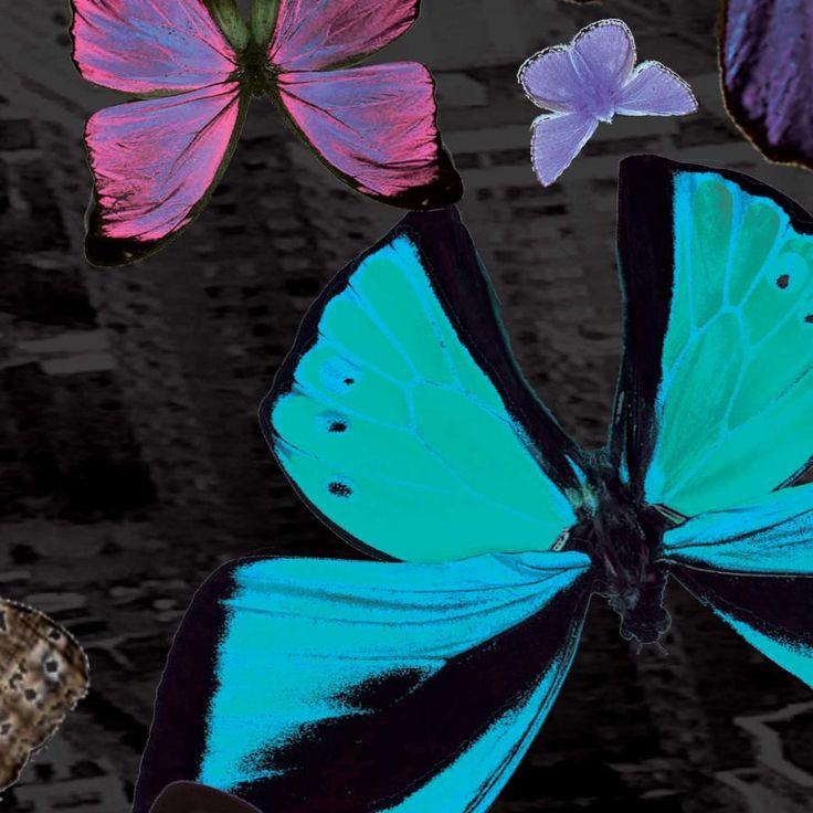 Color in Dark City, #Colorful #butterflies bring light, life and color to the nights of Dark City. #design, #fashion, #Scarf