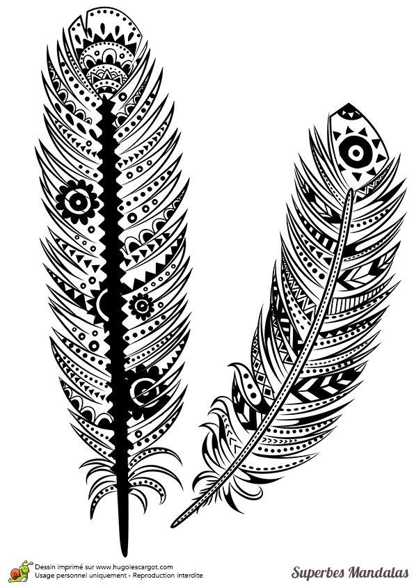 Coloriage d'un superbe mandala avec des motifs de plumes - Hugolescargot.com
