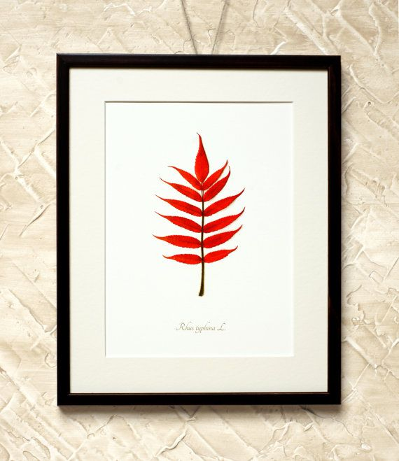 Wall Decor Red Sumach Leaf  7x9'' Print on by RetroPhotographyArt