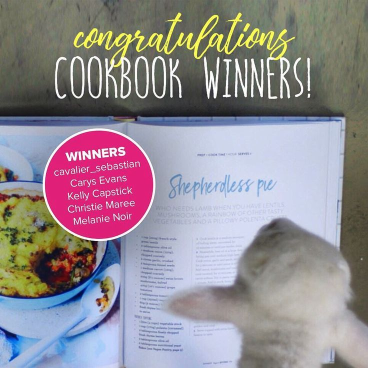🎉 COOKBOOK COMPETITION WINNERS ANNOUNCED! 🎉.. Thank you to everyone who participated in the cookbook giveaway! Lancelot the Lamb's favourite recipe was ... prepare yourself to be shocked ... 🇩SHEPHERDLESS PIE. 😉 Congratulations to @cavalier_sebastian, Carys, Kelly, Christie and Melanie. You will be receiving your copy of 'Vegan Kitchen' from The @womensweeklymag very soon! For all our other amazing entrants, here's a video of Lancelot frolicking with his adopted brothers Louis and Henry…