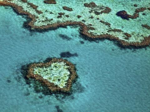 10 platser att besöka. Stora Barriärrevet, Australien
