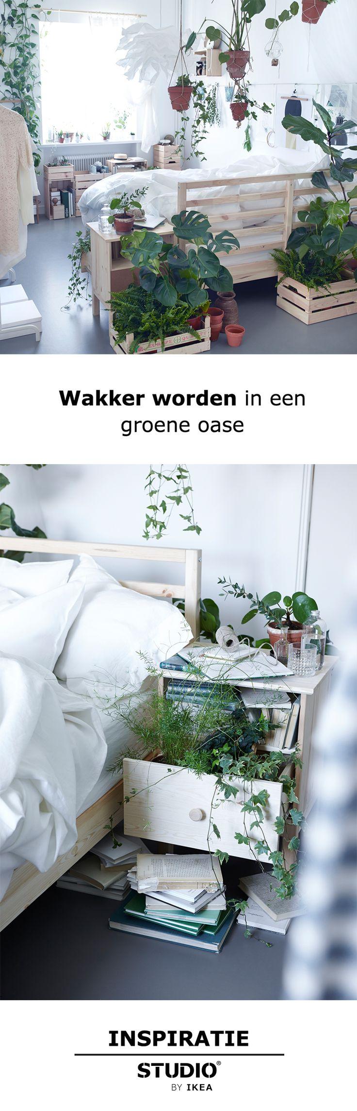 STUDIO by IKEA - Wakker worden in een groene oase | #STUDIObyIKEA #IKEA #IKEAnl…