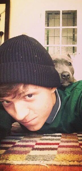 ❤️Tom and Tessa❤️>>> tom and his dog apparently <<< this picture made my heart skip a beat. He's too adorabubble