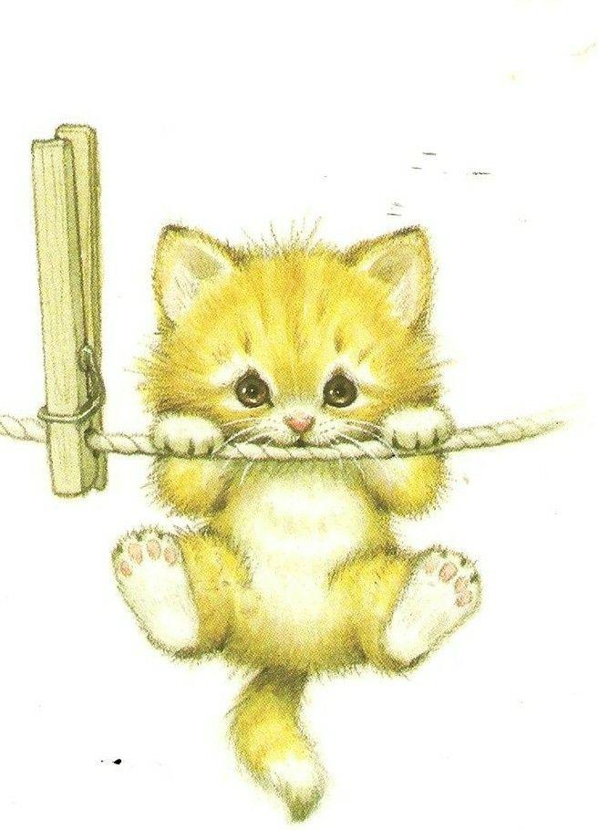 Картинки держись котенок