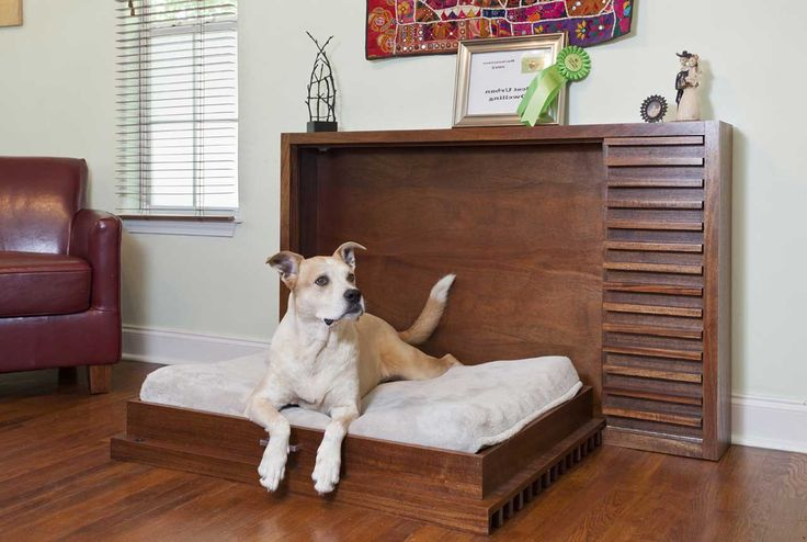 Best-Dog-Furniture-Design ~ http://www.lookmyhomes.com/smart-in-choosing-dog-furniture/