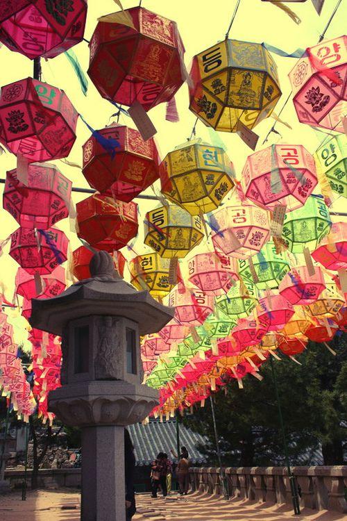 Buddha's birthday in Korea  To book go to www.notjusttravel.com/anglia