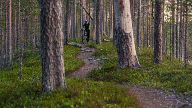 maastopyöräily > 900 kilometriä poljettavaa – maailman laajin maastopyöräverkosto Ylläkselle