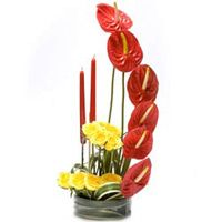 Send Christmas flowers, gifts, cakes to Kolkata from local florist fnp.com. We offer gift like fresh flowers, gift hampers, chocolates, roses, cakes and more for Christmas and you can order gifts online in Kolkata with free shipping. http://www.fnp.com/flowers/christmas-gifts-to-kolkata/--clI_2-cI_3045.html