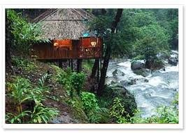 Amazing location for this little cottage resort in Wayanad, Kerala