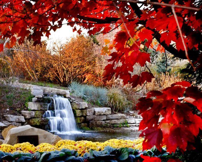 cdd2b1a4c0bddcae1d5d4d7bf3582691 - Red Cedar Gardens Overland Park Ks