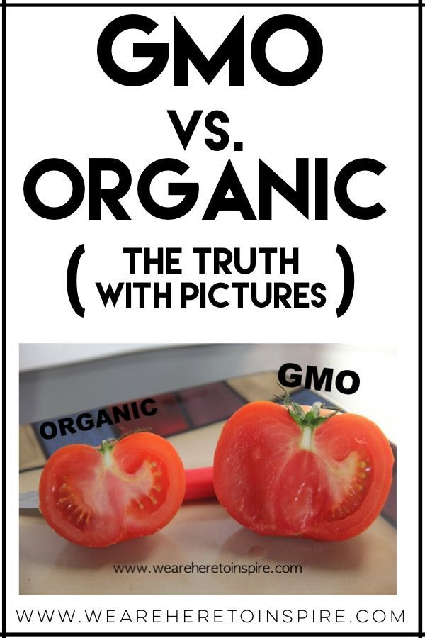 GMO vs. ORGANIC! The Truth (with pictures)   Organic ...
