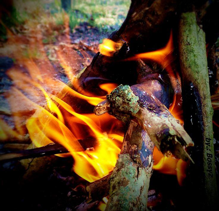 Fire Hungarian Lébény
