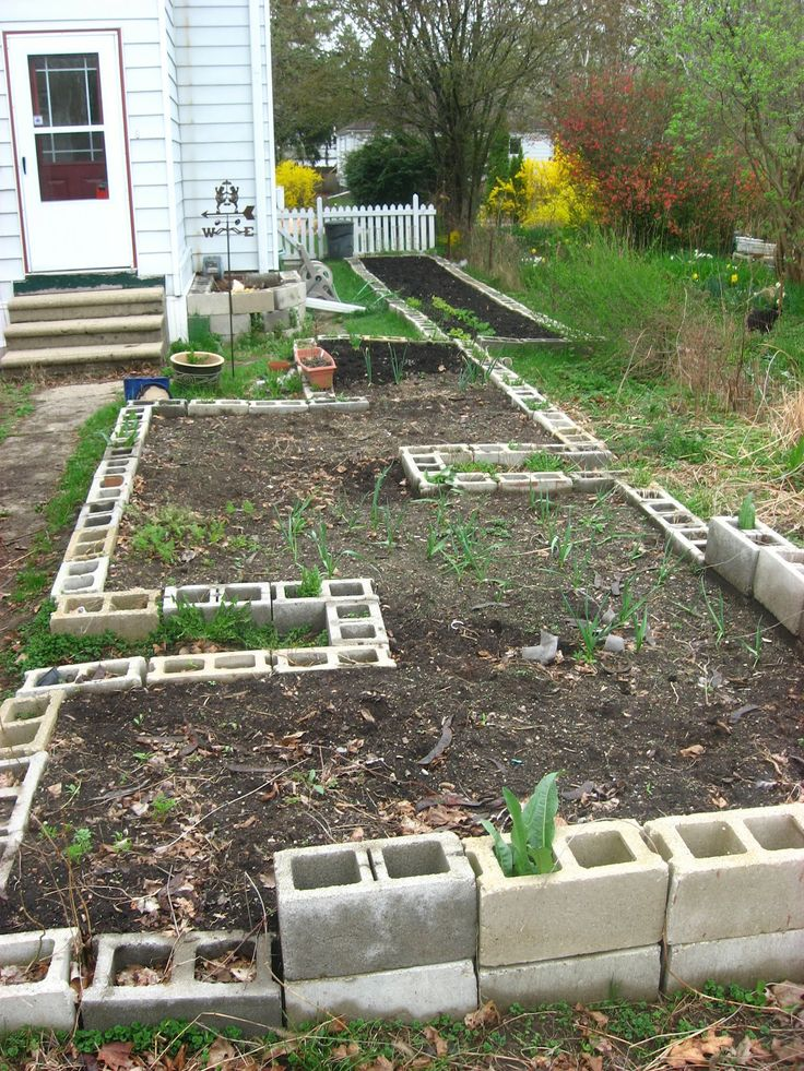 Cement Raised Flower Beds : Best images about concrete block raised bed gardening