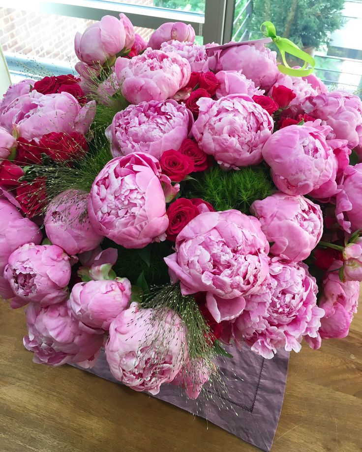 С днем рождения фото цветы пионы, картинки телефон для