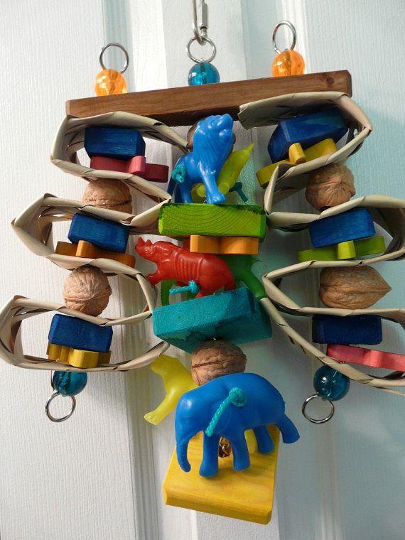 Bird Enrichment Toys : Best images about enrichment on pinterest parakeet