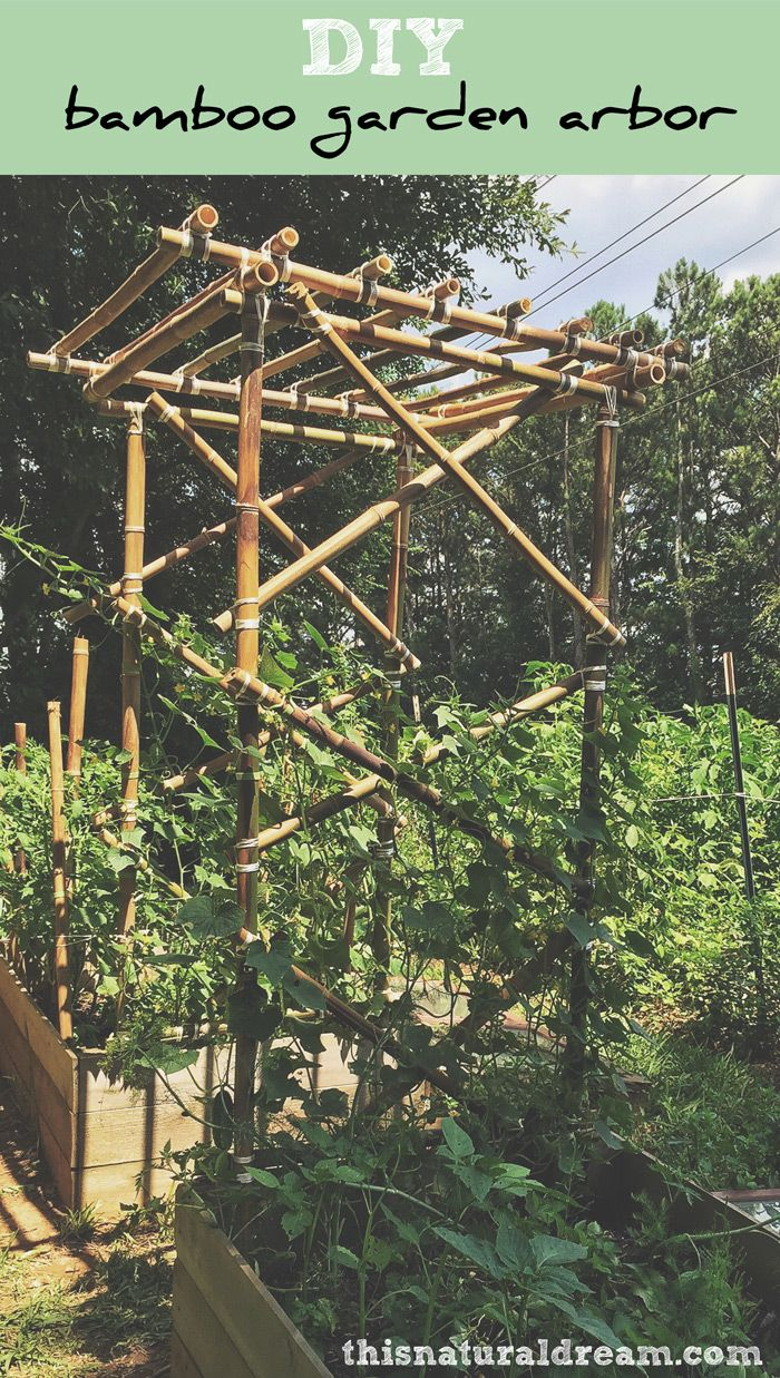 DIY bamboo garden arbor - a tutorial on how to build bamboo garden structures. This is a perfect trellis for cucumbers and other vines.