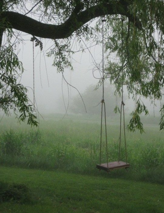 Best 25 tree swings ideas on pinterest childrens swings Wood tree swing and hanging kit
