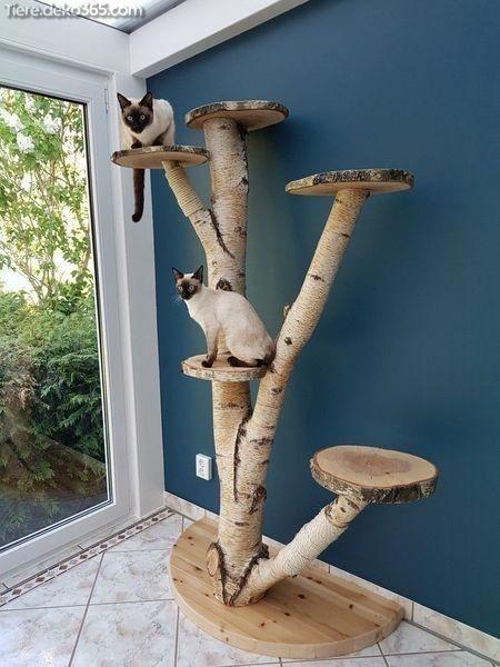 Schöne Utensilien, die Sie beim Zusammensetzen eines benutzerdefinierten Kratzbaums vermeiden…