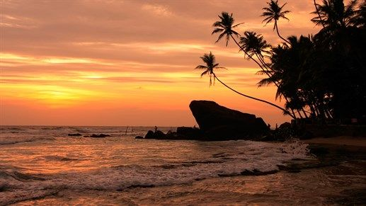 Places to visit 2016: Sri Lanka. An amazing place for surfing, diving and cultural experiences. Not to mention the beaches in susnet. Wow! #kilroy #asia #travel