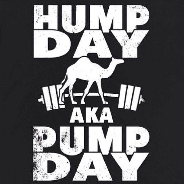Image result for hump day gym motivation