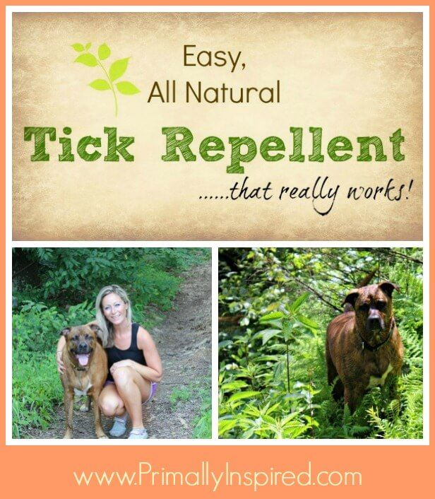 Easy, Natural Tick Repellent That Really Works - I went from pulling 3-4 ticks a day off me and my dog to none with this!!!