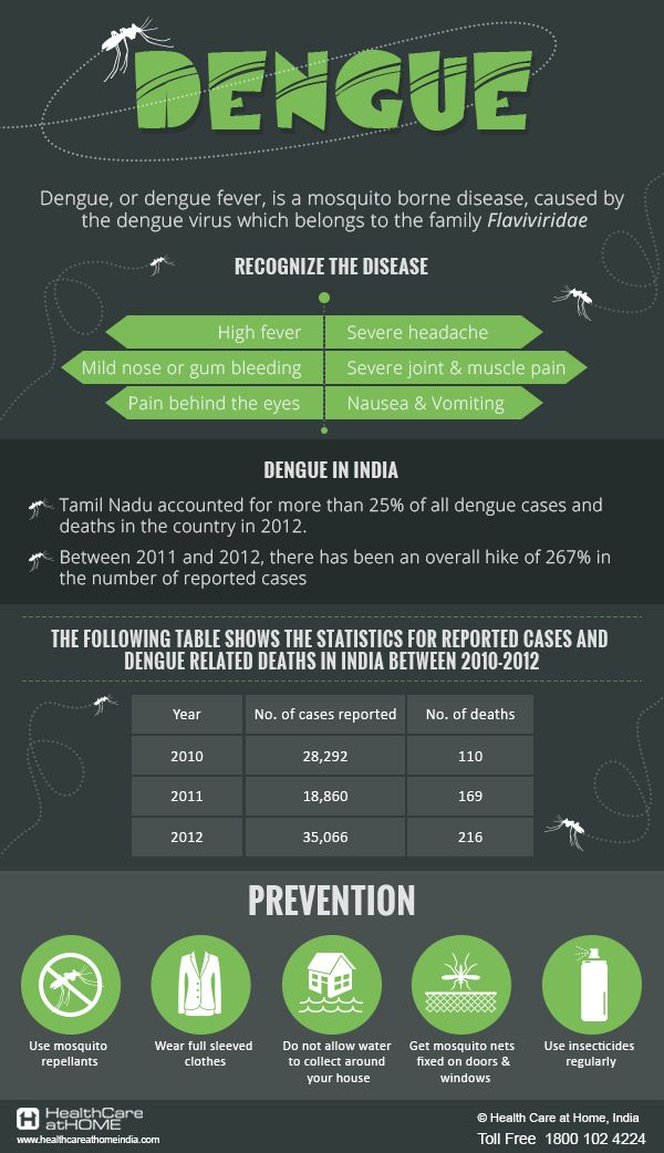 Dengue Infographic on Behance