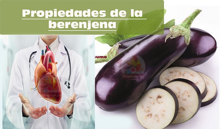 Solanum melongena: Berenjenas y sus propiedades: mejor conocida como Berenjena esta es una poderosa planta de fruto comestible, es del genero Solanum dentro de las familia de las Solanáceas. Es perfecta para que la incluirla en nuestra dieta para bajar de peso.