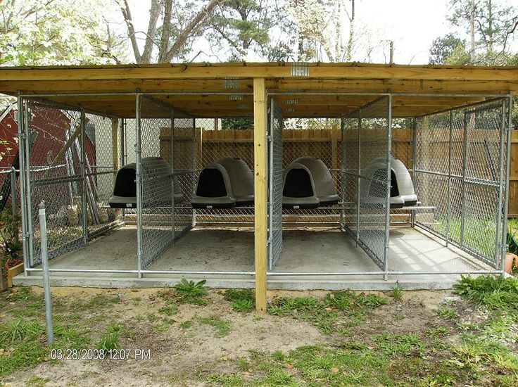 Multiple dog kennel dog kennels pinterest dog dog for Building dog kennels for breeding